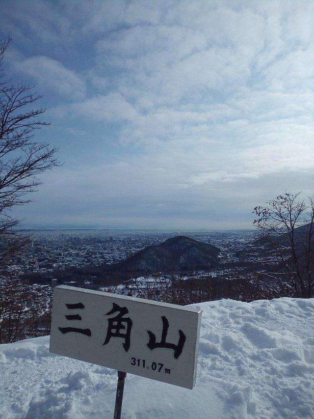 f:id:hankakusaizou:20170121135700j:plain