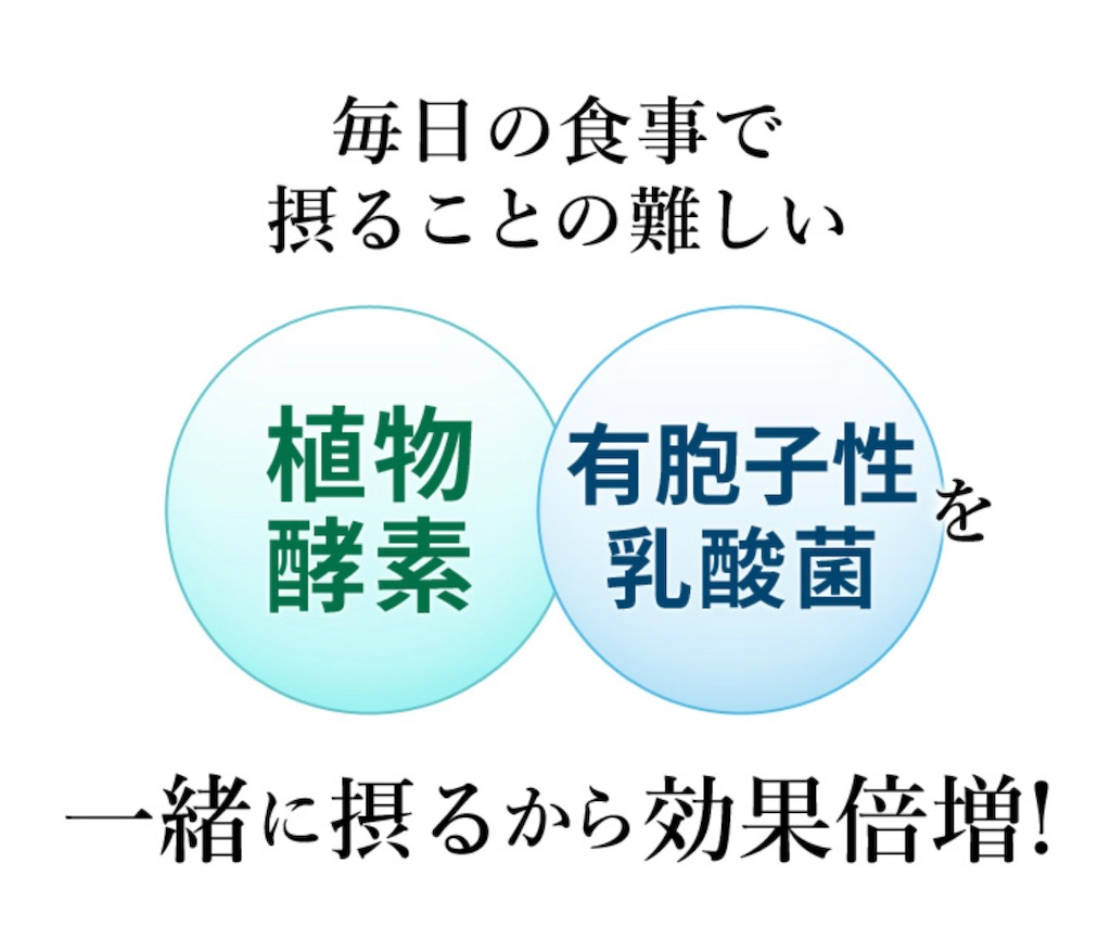 f:id:hanna0125tan:20210203161143j:image