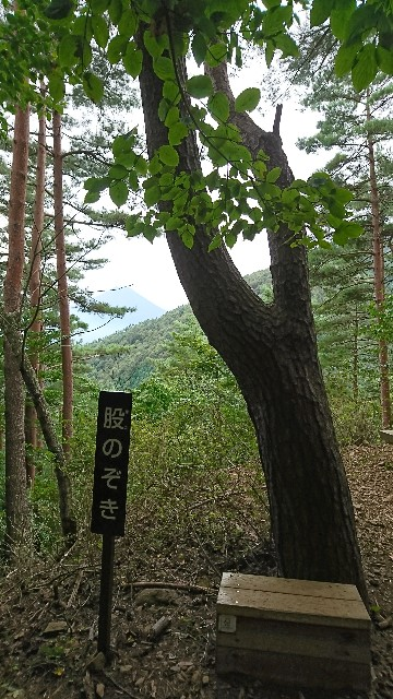 f:id:hannaribiyori3:20201005215304j:image