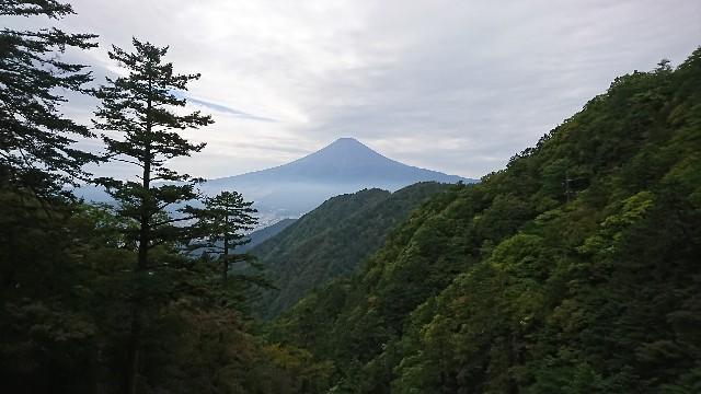 f:id:hannaribiyori3:20201006052308j:image
