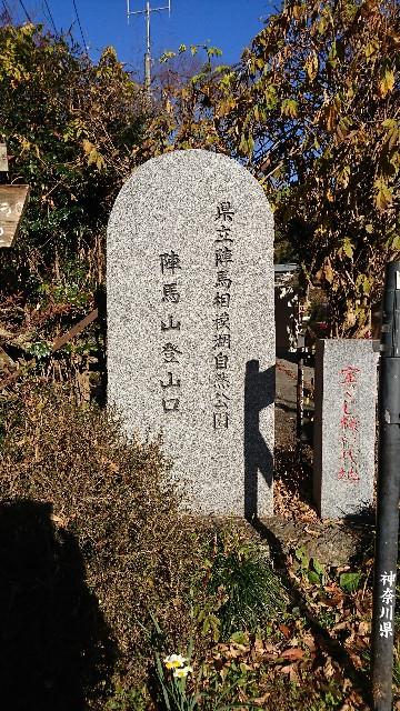 f:id:hannaribiyori3:20201208143013j:image