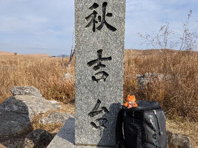 f:id:hannaribiyori3:20201230105525j:image