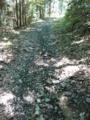 ダート林道