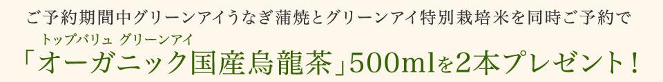 f:id:hansoku365:20160622150937p:plain