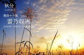 f:id:hansoku365:20160917200352p:plain