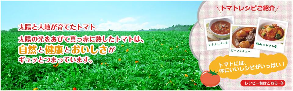f:id:hansoku365:20161010093505p:plain