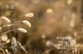 f:id:hansoku365:20161220114023p:plain