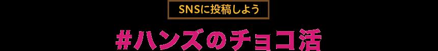 f:id:hansoku365:20170111142933p:plain