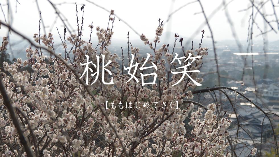 f:id:hansoku365:20170308171209p:plain