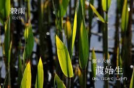 f:id:hansoku365:20170419175916p:plain