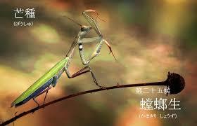 f:id:hansoku365:20170605191752p:plain