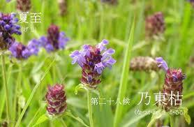 f:id:hansoku365:20170620155201p:plain