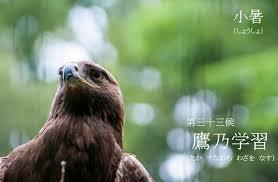 f:id:hansoku365:20170711104416p:plain