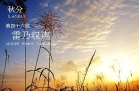 f:id:hansoku365:20170920191425p:plain