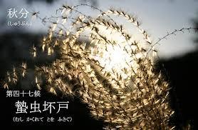 f:id:hansoku365:20170925172110p:plain