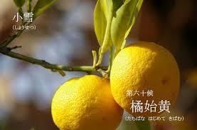 f:id:hansoku365:20171127141357p:plain