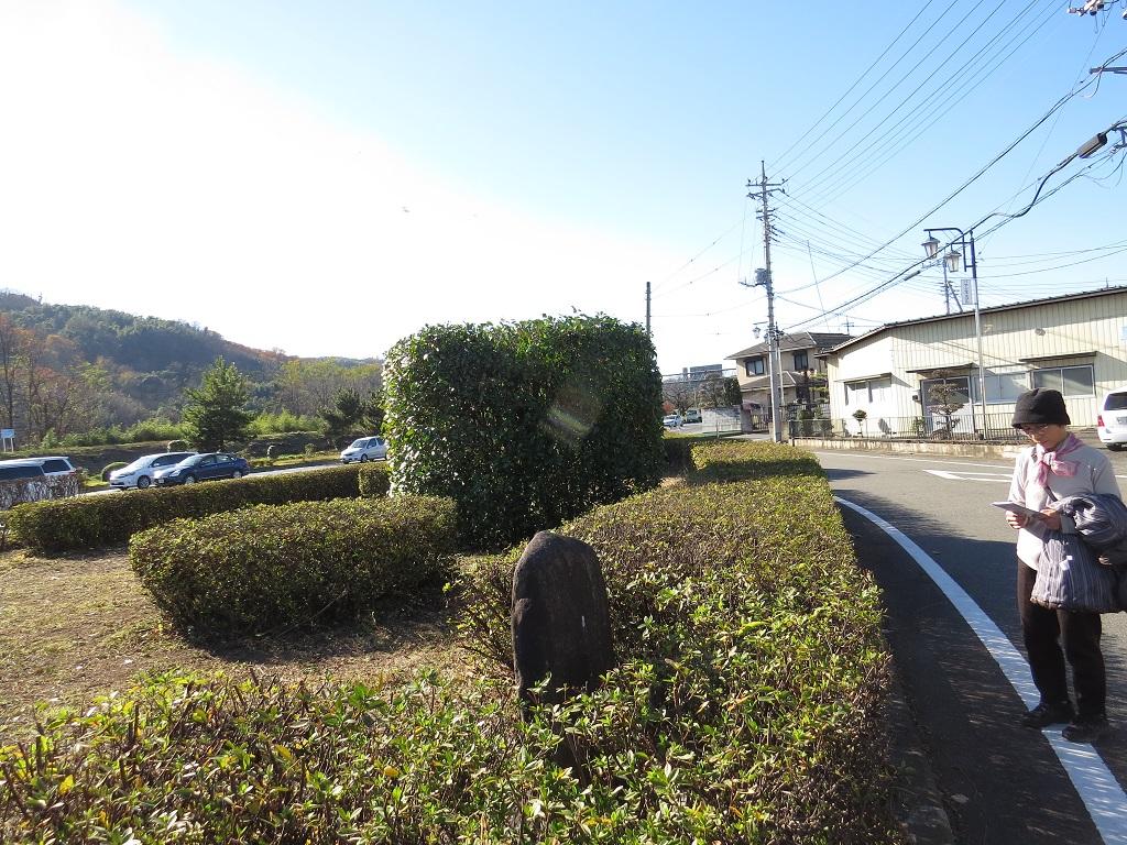 f:id:hansui:20161206164112j:plain