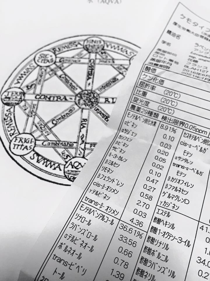 f:id:hanuru-hanuru:20171004153015j:plain