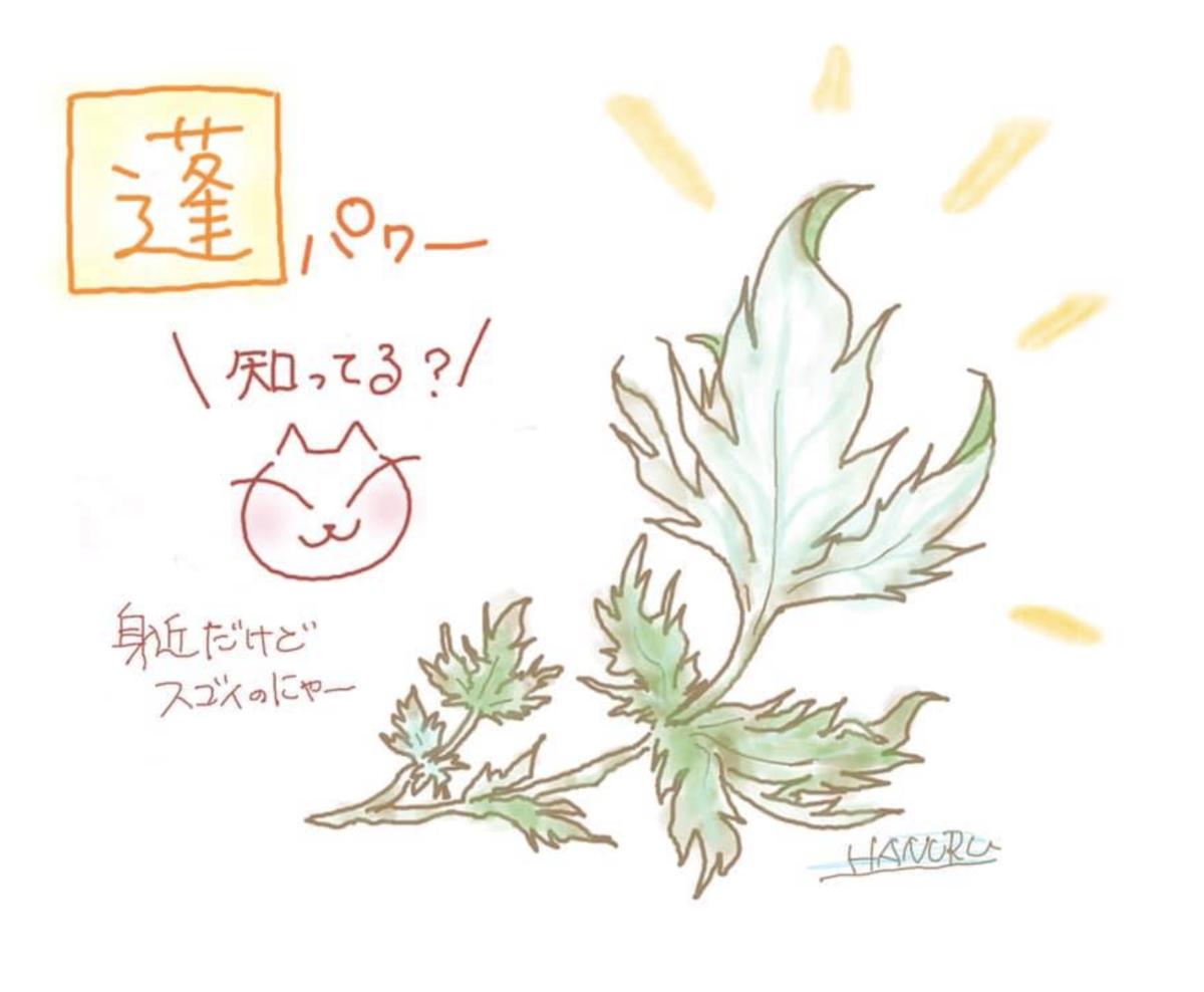 f:id:hanuru-hanuru:20200624124644p:plain