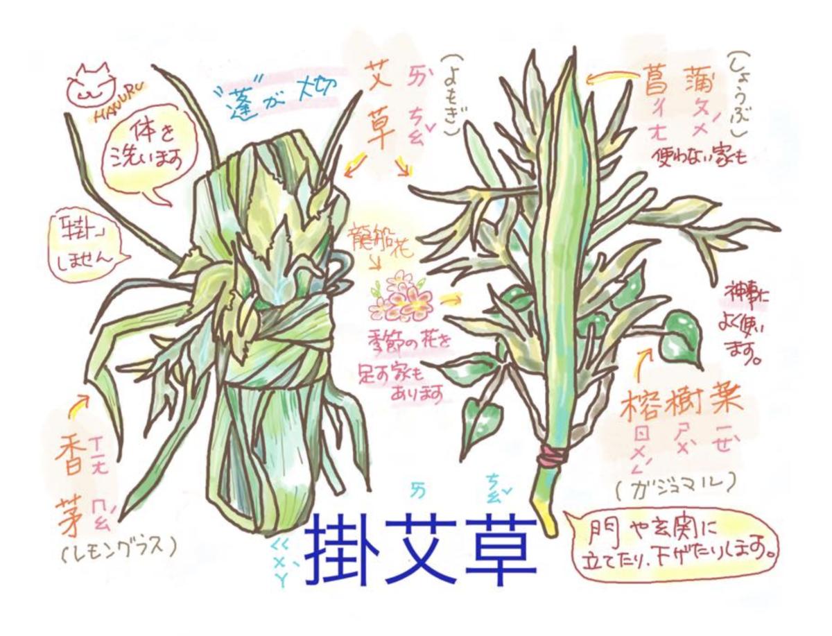 f:id:hanuru-hanuru:20200625110631p:plain