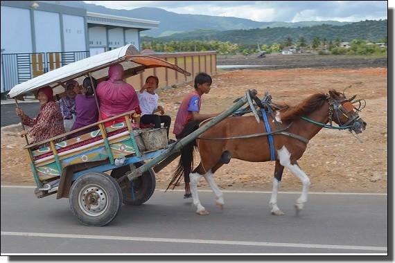 スンバワの馬車