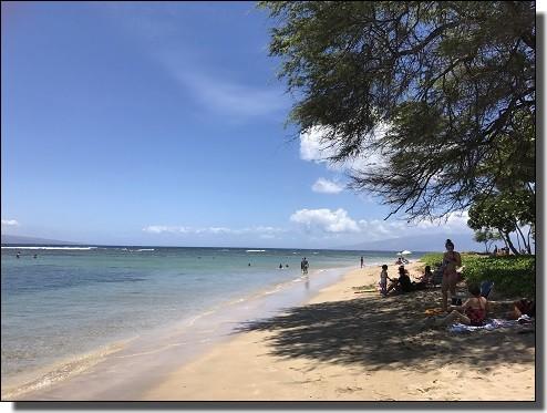 JALビジネスクラスで行くbaby beach