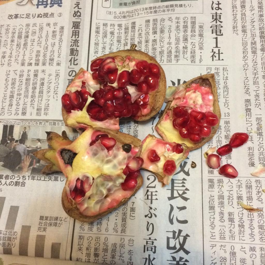f:id:hanzo65:20161129192923j:plain