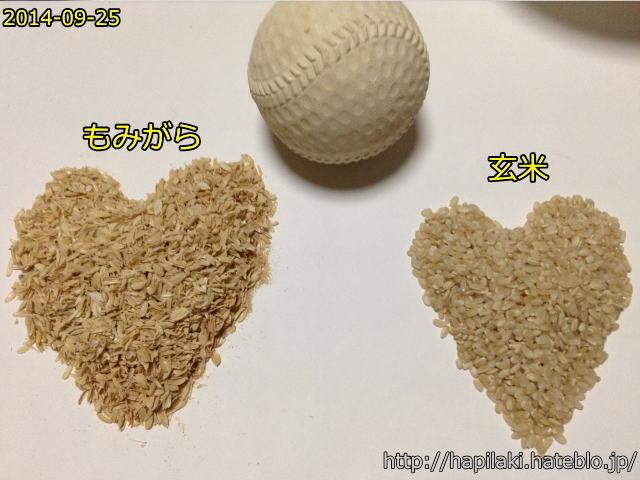 ザルと軟球でもみすりして玄米にする5