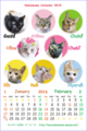 【猫アニメ】ネコまめちゃんカレンダー