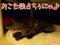 【猫アニメ】3月ににゃったのに…