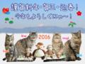 160101-謹賀新年・賀正・迎春にゃ!