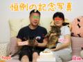 [ねこ][多頭飼][里親募集][アニメ]160522-【猫アニメ】らぶんチ・お誕生日にゃ!