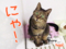 160722-【猫アニメ】ママちゃんお兄ちゃんのはっぴぃ♪バースデー!