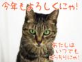 [ねこ][多頭飼][里親募集][アニメ][カレンダー]【猫アニメ】はぴ♪らぶ*フレンズカレンダー2017お写真募集開始にゃ