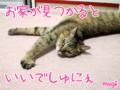[ねこ][多頭飼][里親募集][アニメ]160904-【猫アニメ】にゃんこシェルターへ、再びにゃ!