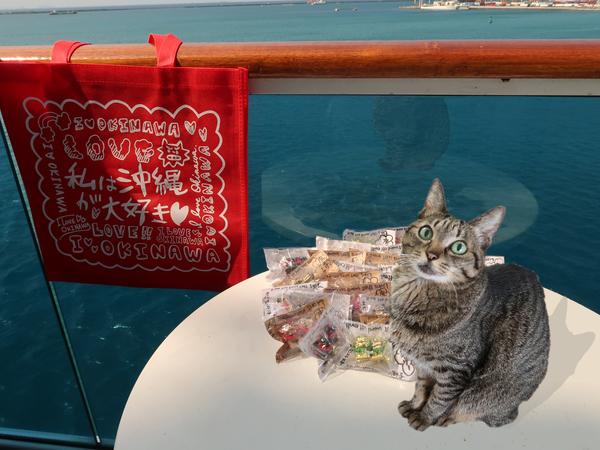 [猫][多頭飼い][里親募集][動物愛護][クルーズ][ダイヤモンドプリンセ][横浜][プリンセスクルーズ][エイプリルフール][豪華客船]190401-【猫アニメ】クルーズに行ったにゃ!