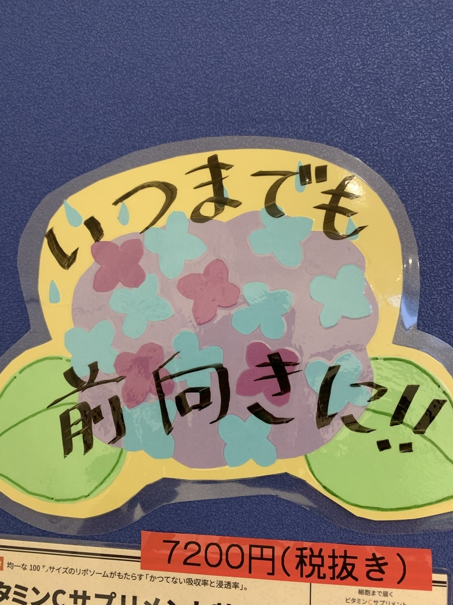 f:id:happy-kubota:20190606053751j:plain