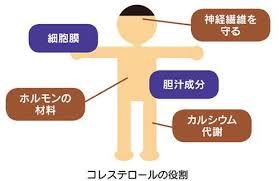 f:id:happy-kubota:20200801064806p:plain