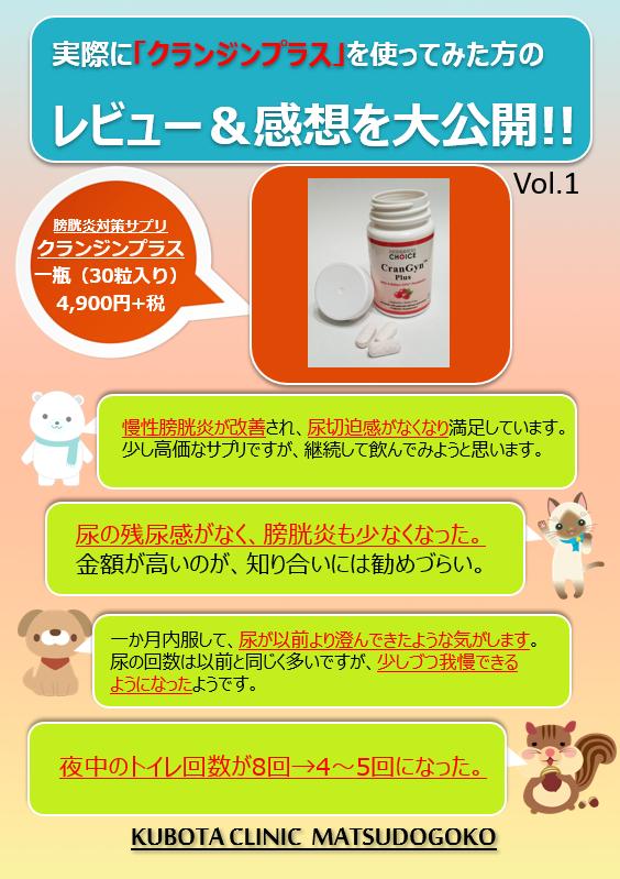 f:id:happy-kubota:20210712063646p:plain