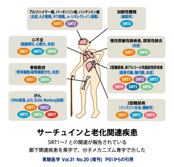 f:id:happy-kubota:20210719063123p:plain