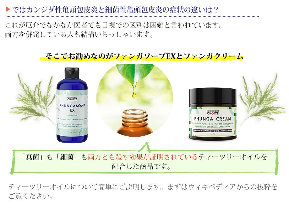 f:id:happy-kubota:20210921222111p:plain