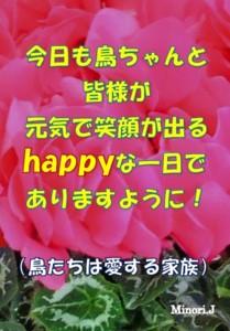f:id:happy-ok3:20141226213855j:plain