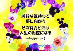f:id:happy-ok3:20170320222038j:image:w360