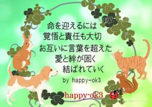 f:id:happy-ok3:20170623161718j:image:w360