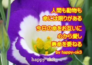 f:id:happy-ok3:20180515223301j:image:w360