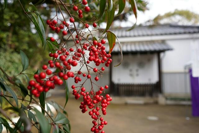 f:id:happy-shin-kyoto:20171231124901j:image