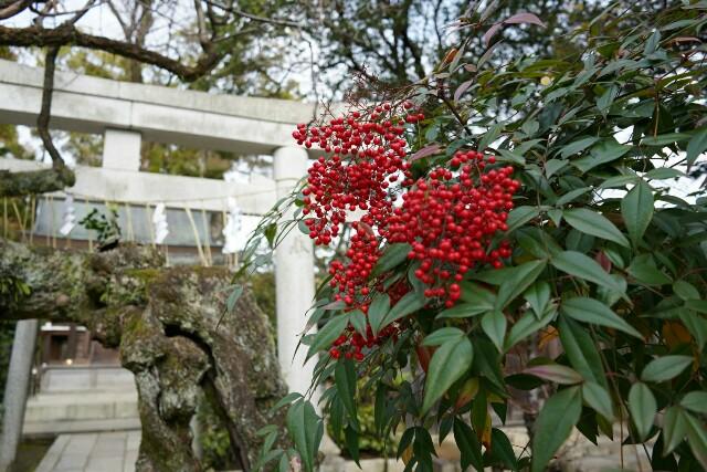 f:id:happy-shin-kyoto:20171231124921j:image