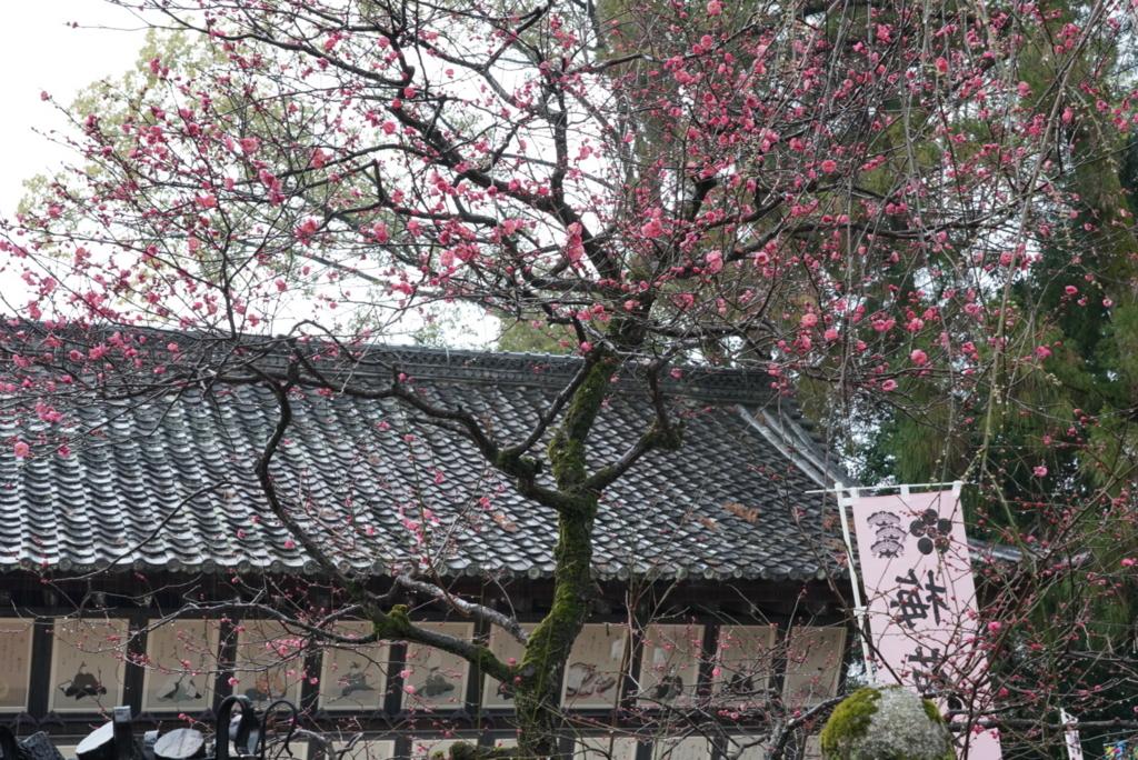 f:id:happy-shin-kyoto:20180211075440j:plain