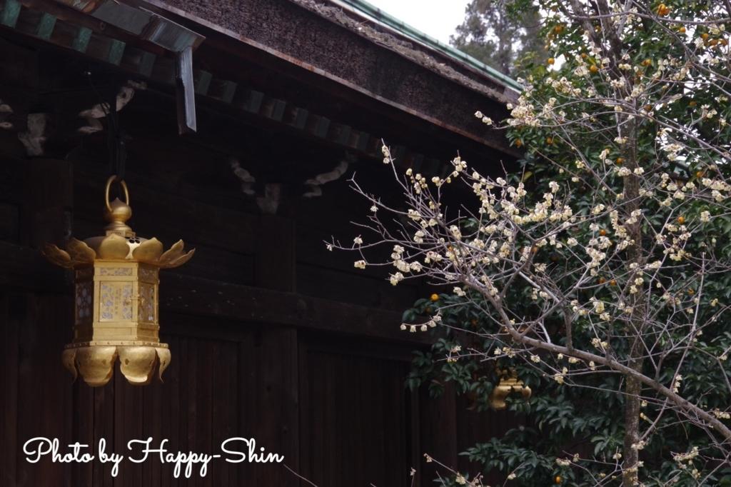 f:id:happy-shin-kyoto:20180225230403j:plain