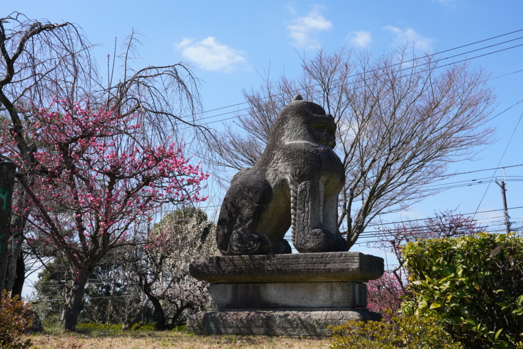 f:id:happy-shin-kyoto:20180311202035j:plain